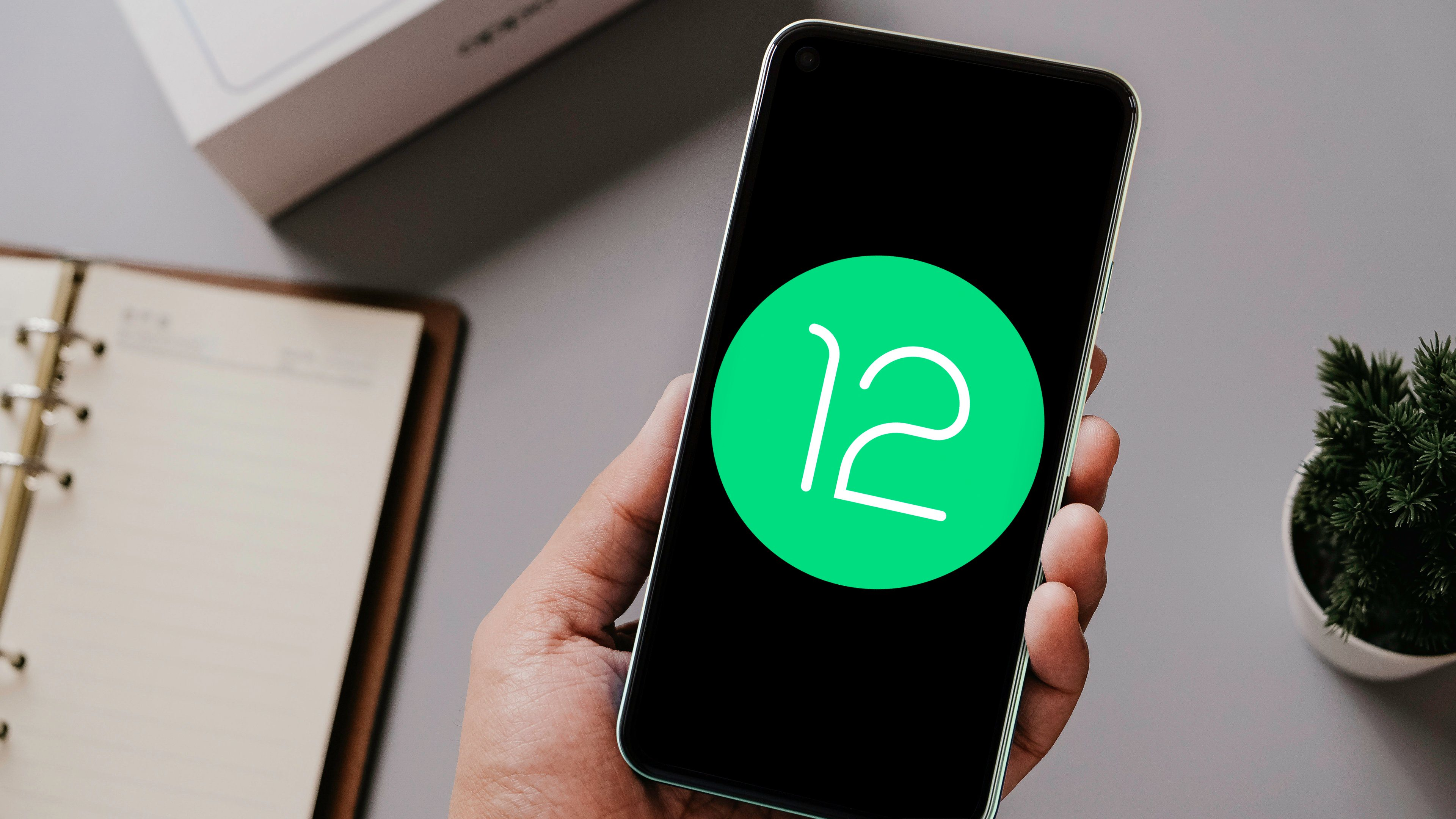 Android 12: Here's everything you wanted to know | NextPit