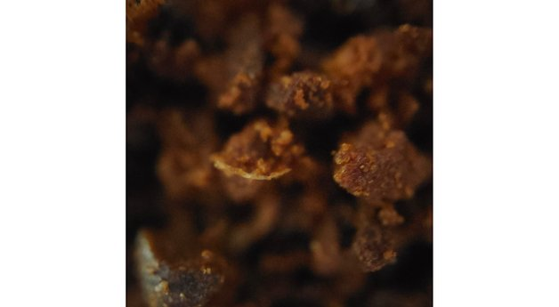 Oppo-Find-X3-Pro-Microscope-3