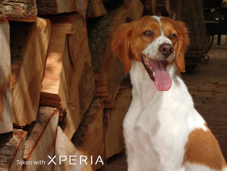 Sony Xperia 1 sample Pic
