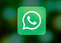 Busca do WhatsApp ganha filtros: veja como usar