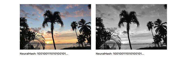 Neural Hash