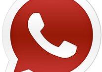 Canular WhatsApp: les chaînes d'e-mails ne sont toujours pas démodées
