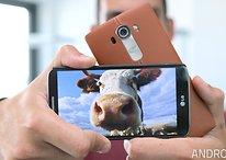 Con lo que vale 1 Kg de LG G4 te puedes comprar 7 vacas (y otras equivalencias odiosas)